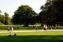 Park-1595339038.jpg -