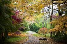 podzim-v-zahrade-3.jpg -