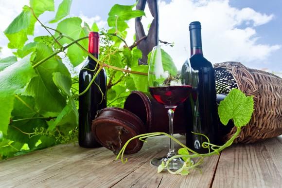 vinobrani%281%29.jpg