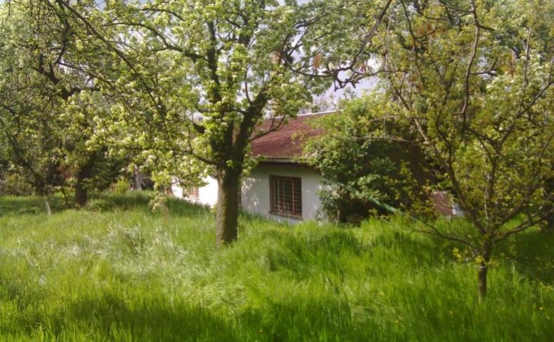 Komunitní centrum a zahrada Kotlaska