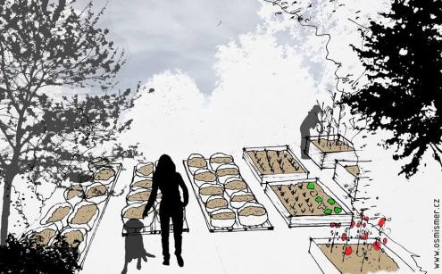 Komunitní zahrada ZEBRA