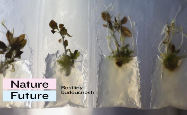 Nature - Future: Rostliny budoucnosti