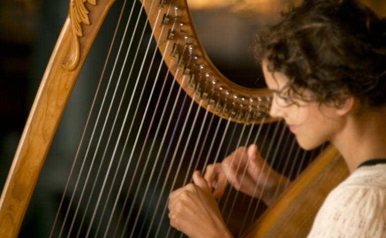 Live Harp Performance