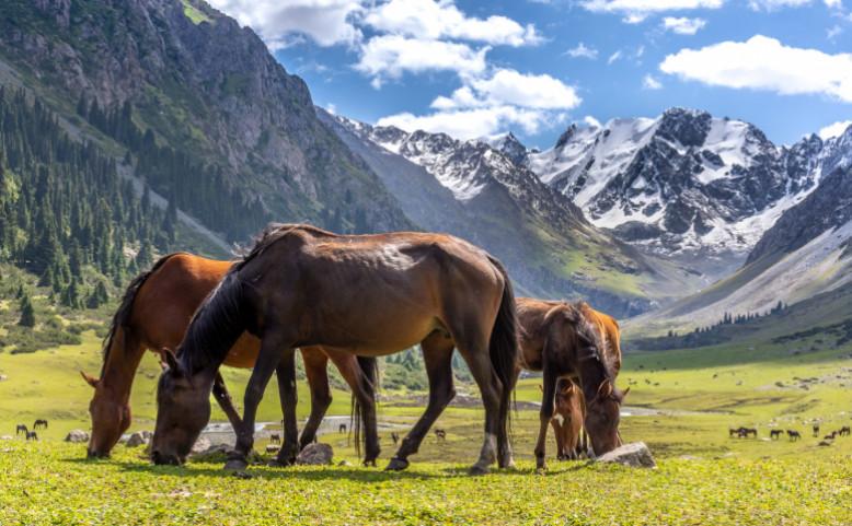 Kyrgyzstán – země vysokých hor a šťastných lidí