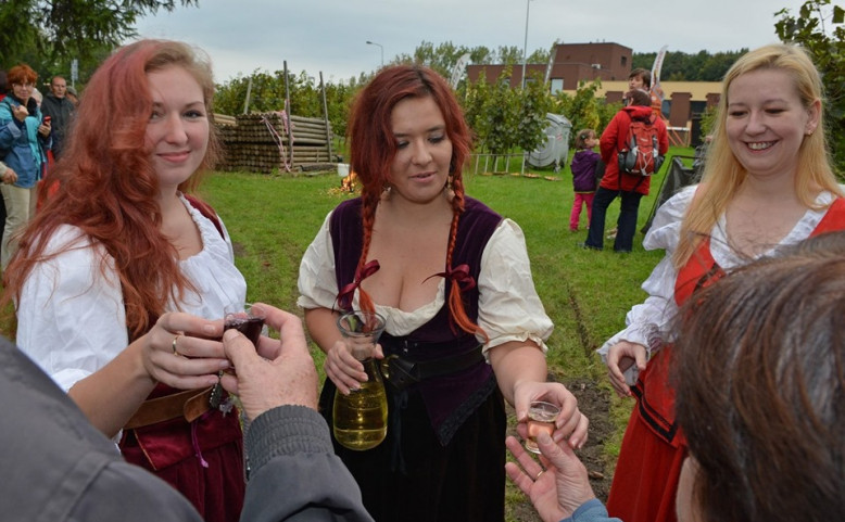 Vysočanské vinobraní na vinici Máchalka