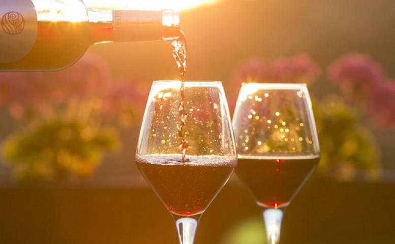 Trojské vinobraní