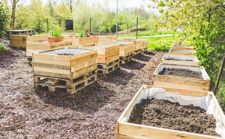 Otevření komunitní zahrady