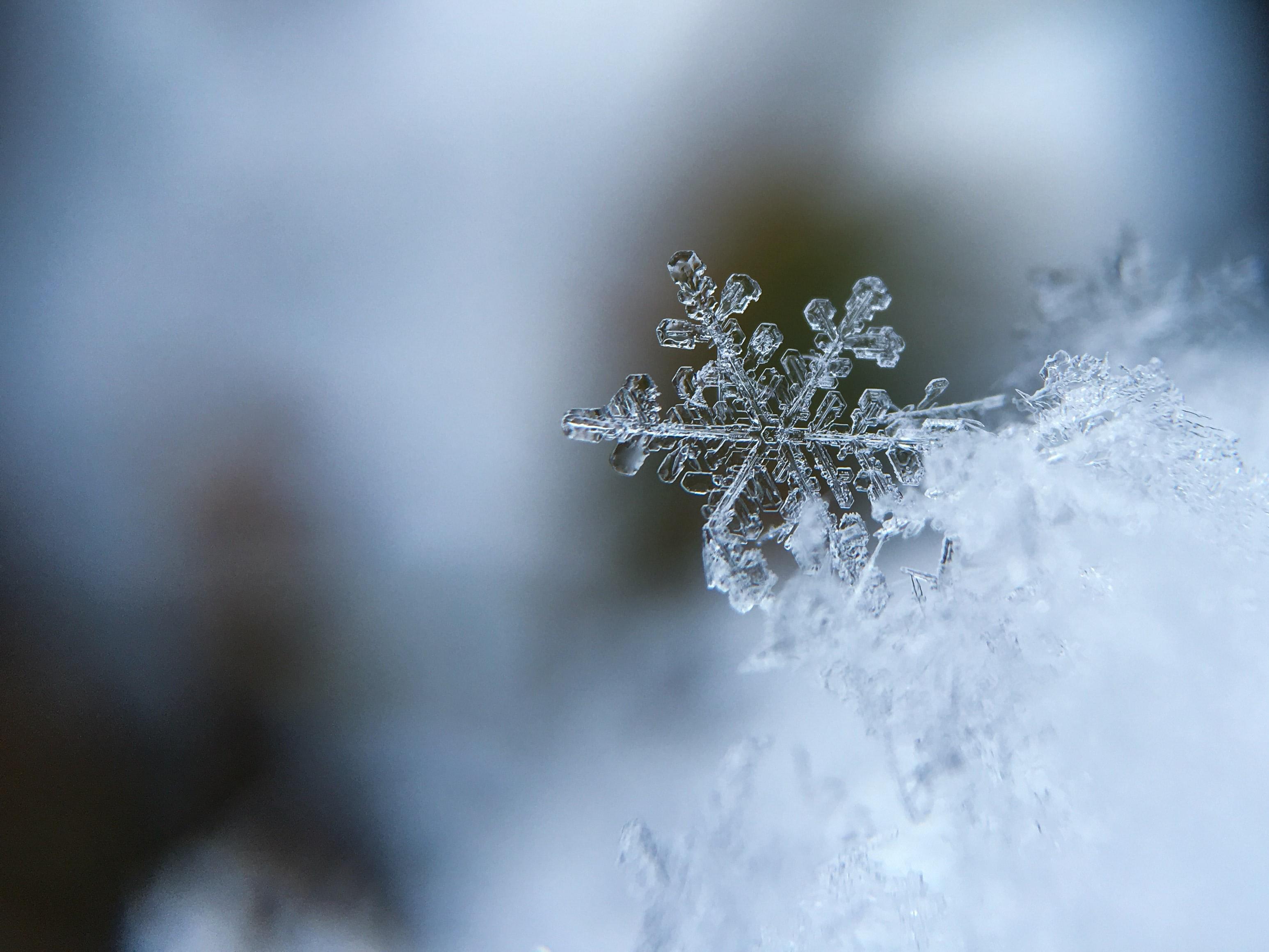 Bude v Česku ještě někdy zima?