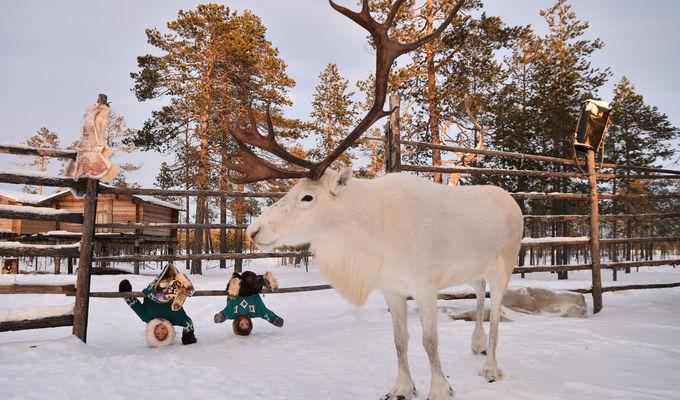 Na Sibiř z domova - @online