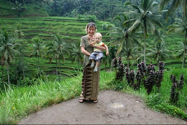 ONLINE: Bali a Sulawesi