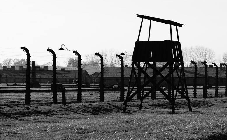 Online projekce dokumentů: Andělé Żegoty