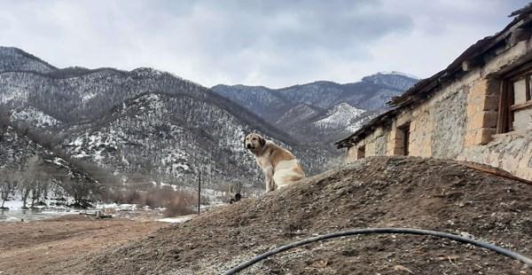 ONLINE: Následky války o Náhorní Karabach
