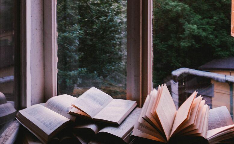 Knihy v kobce: Pavla Horáková - online