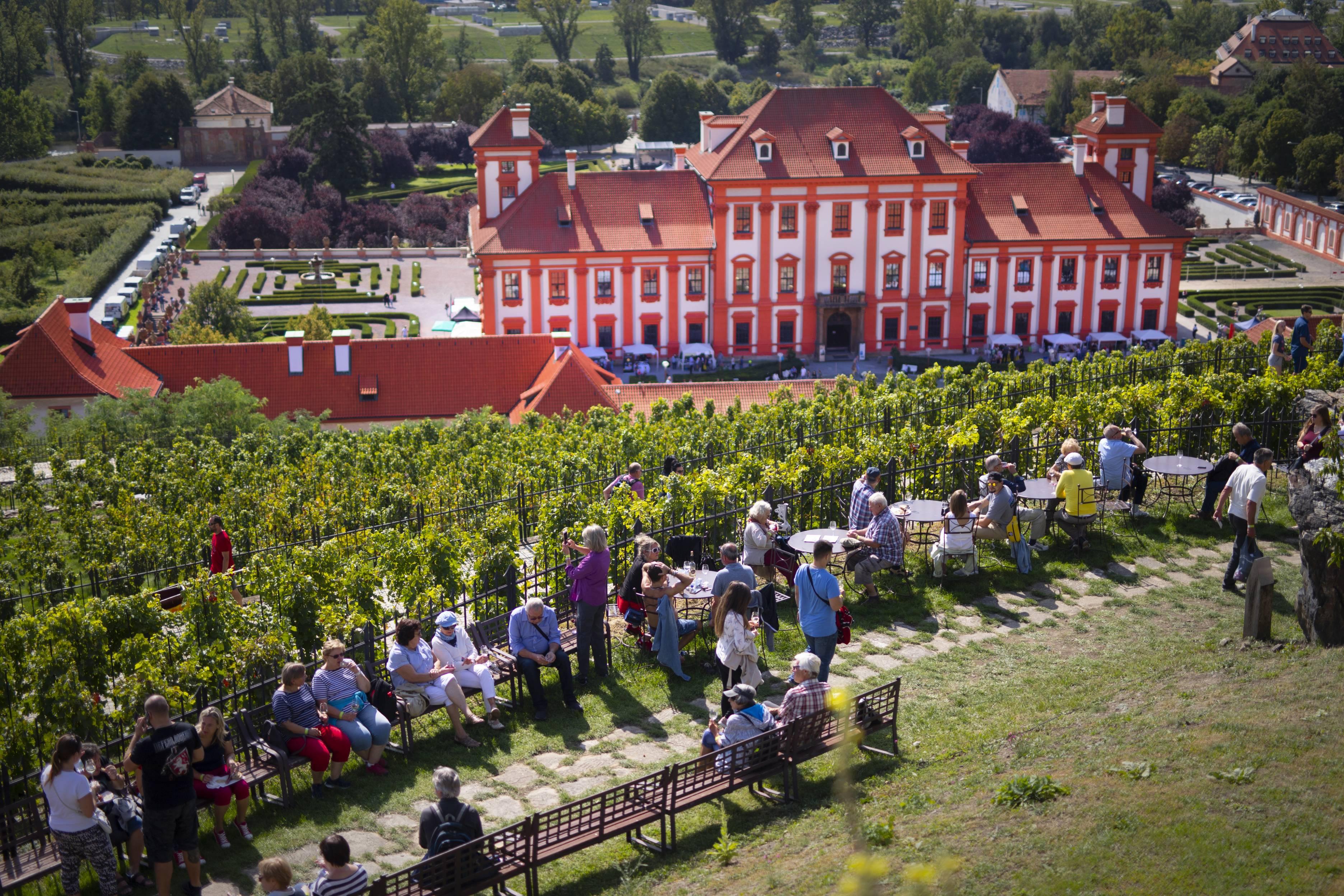 Oslavy sklizně na vinici sv. Kláry