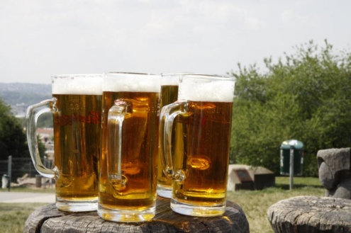 Žižkovské pivobraní 2015