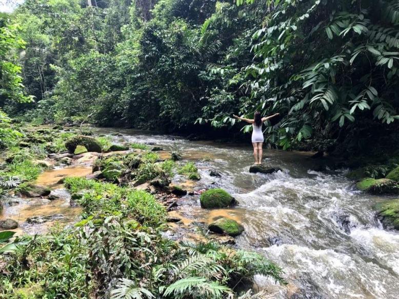 Peru-amazonská očista aneb 3+5 měsíců mezi šamany