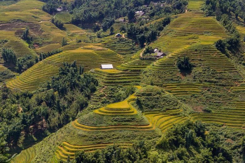 Povídání (z)cesty: #4 - Vietnam a Laos - od Mekongu k Mekongu