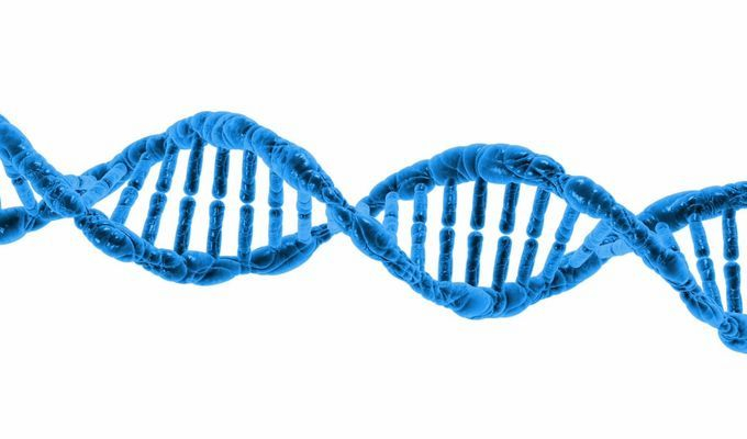 Komentované prohlídky výstavy Doba genová