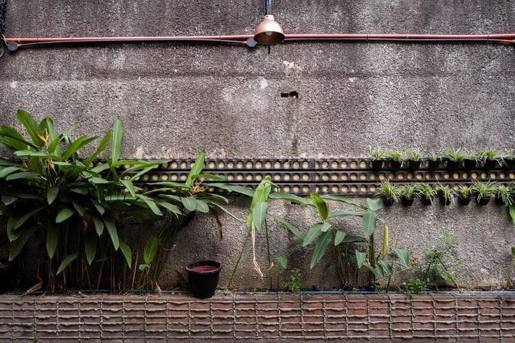 Vernisáž výstavy Inner Gardening