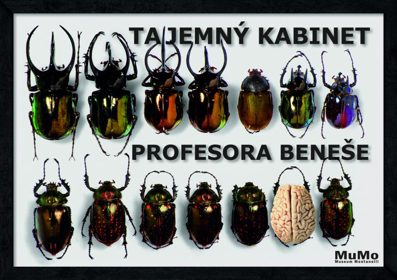 Tajemný kabinet profesora Beneše