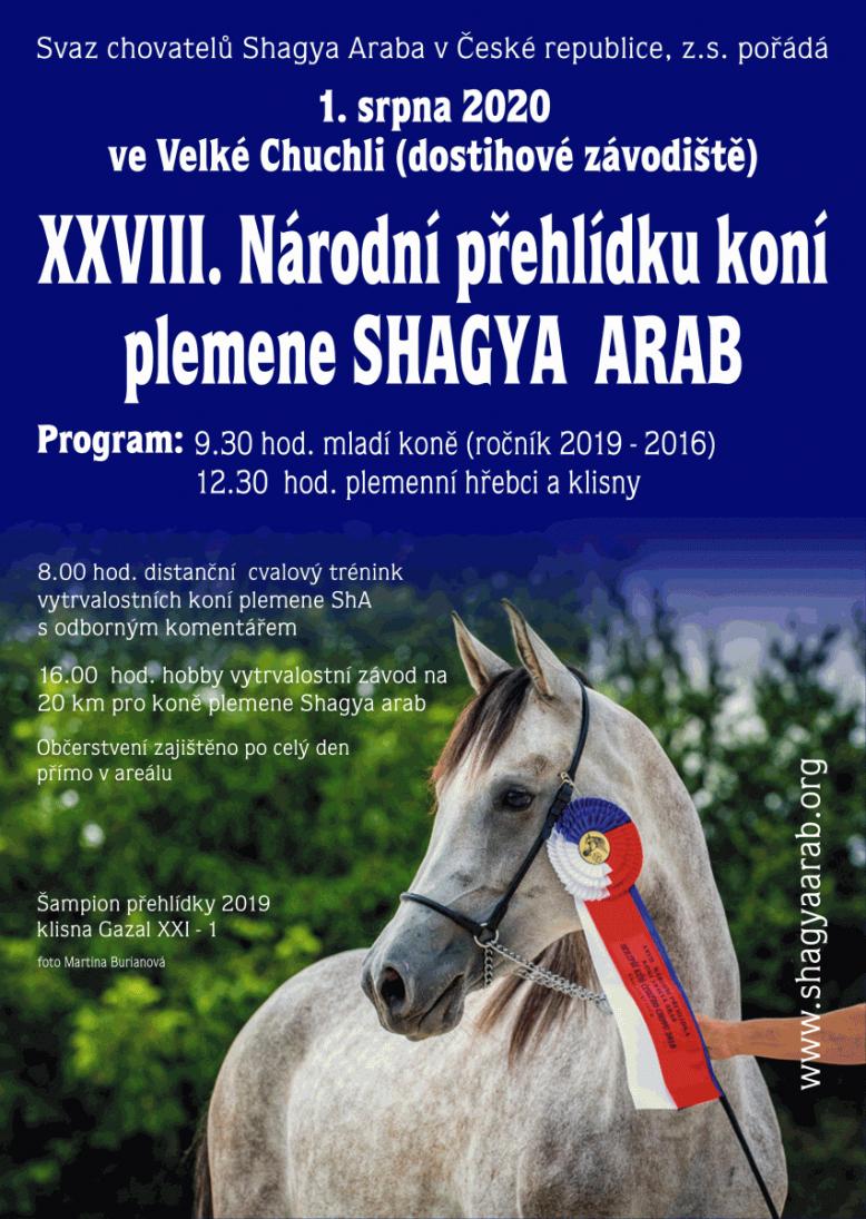 Národní přehlídka koní Shagya Arab - Velká Chuchle
