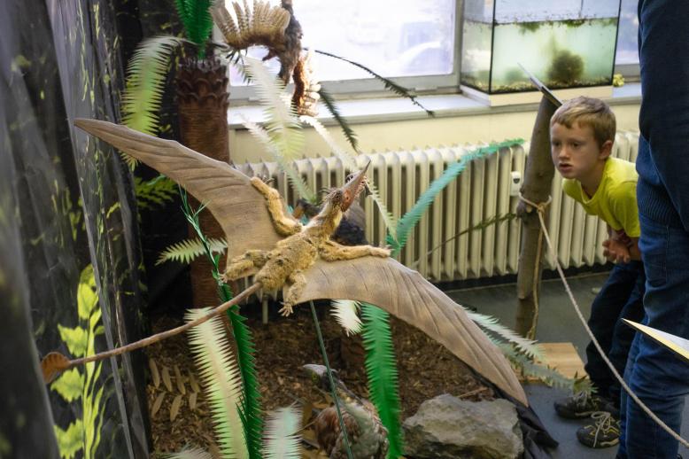 Dinosauří horečka